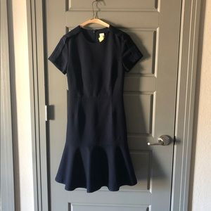 Navy Blue Fit and Flare Banana Republic Dress.